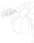 Coloring Book Page ~ Happy Honeybee